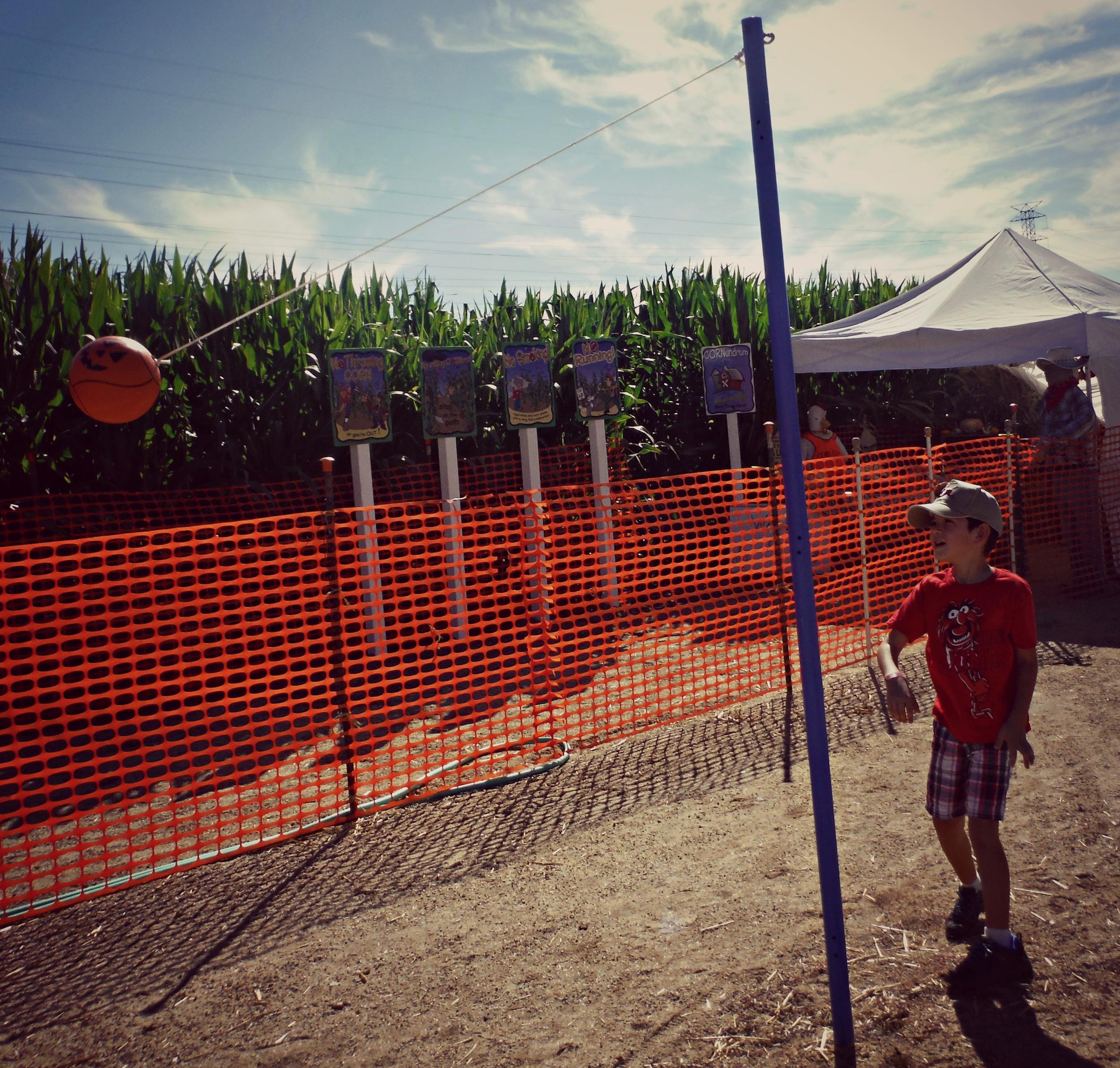 Forneris Farms Harvest Festival 02.jpg