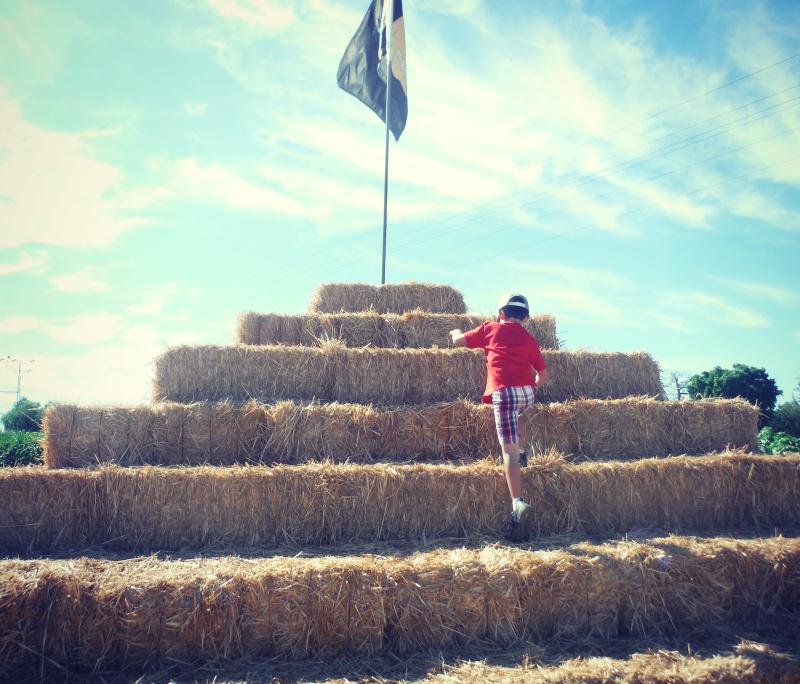 Forneris Farms Harvest Festival 09.jpg