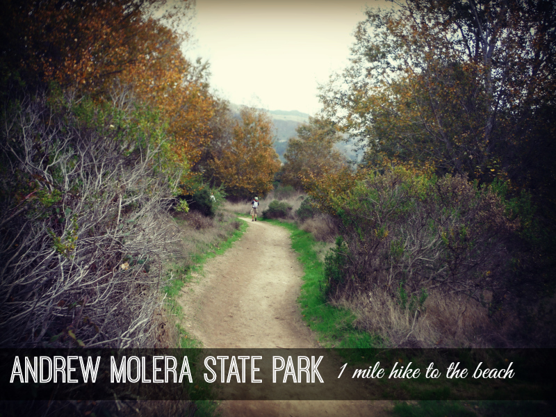 Andrew Molera State Park (6).JPG