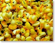 The Annual Duck-A-Thon™