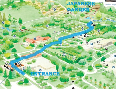 Japanese Gardens Map for Huntington Library Free Day