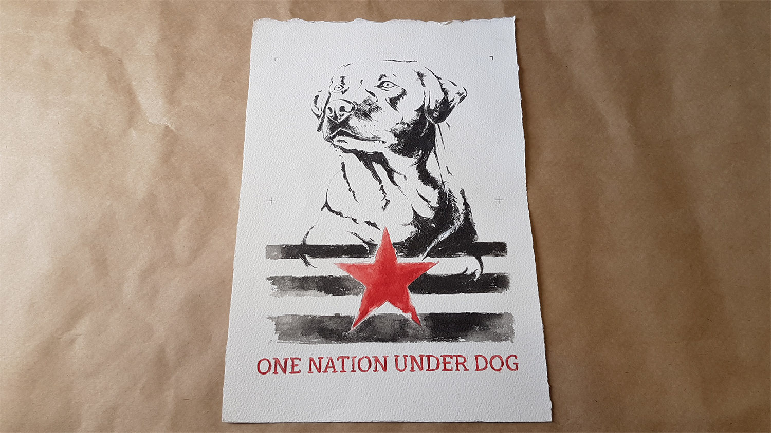 DCONZ_ One Nation_ Or 01.jpg