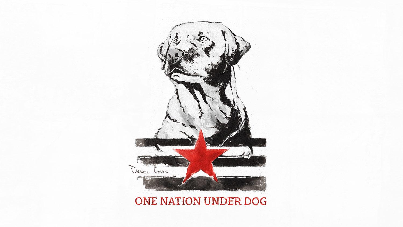 DCONZ_ One Nation_ Final C_ logo ass.jpg