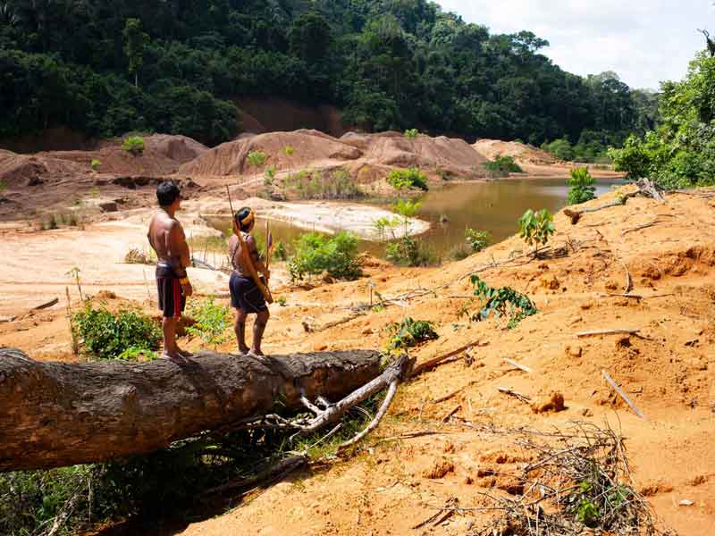 0801-as-the-brazilian-amazon-burns-indigenous-peoples-take-a-stand.jpg