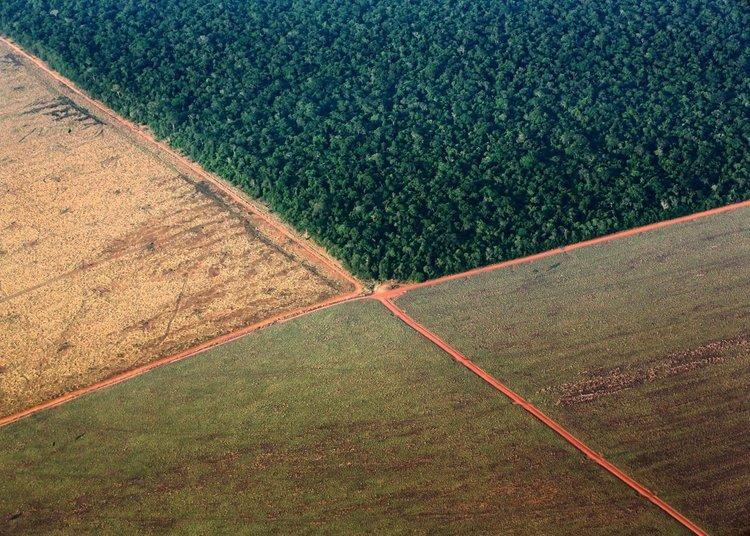 Foto: Greenpeace/Daniel Beltrá