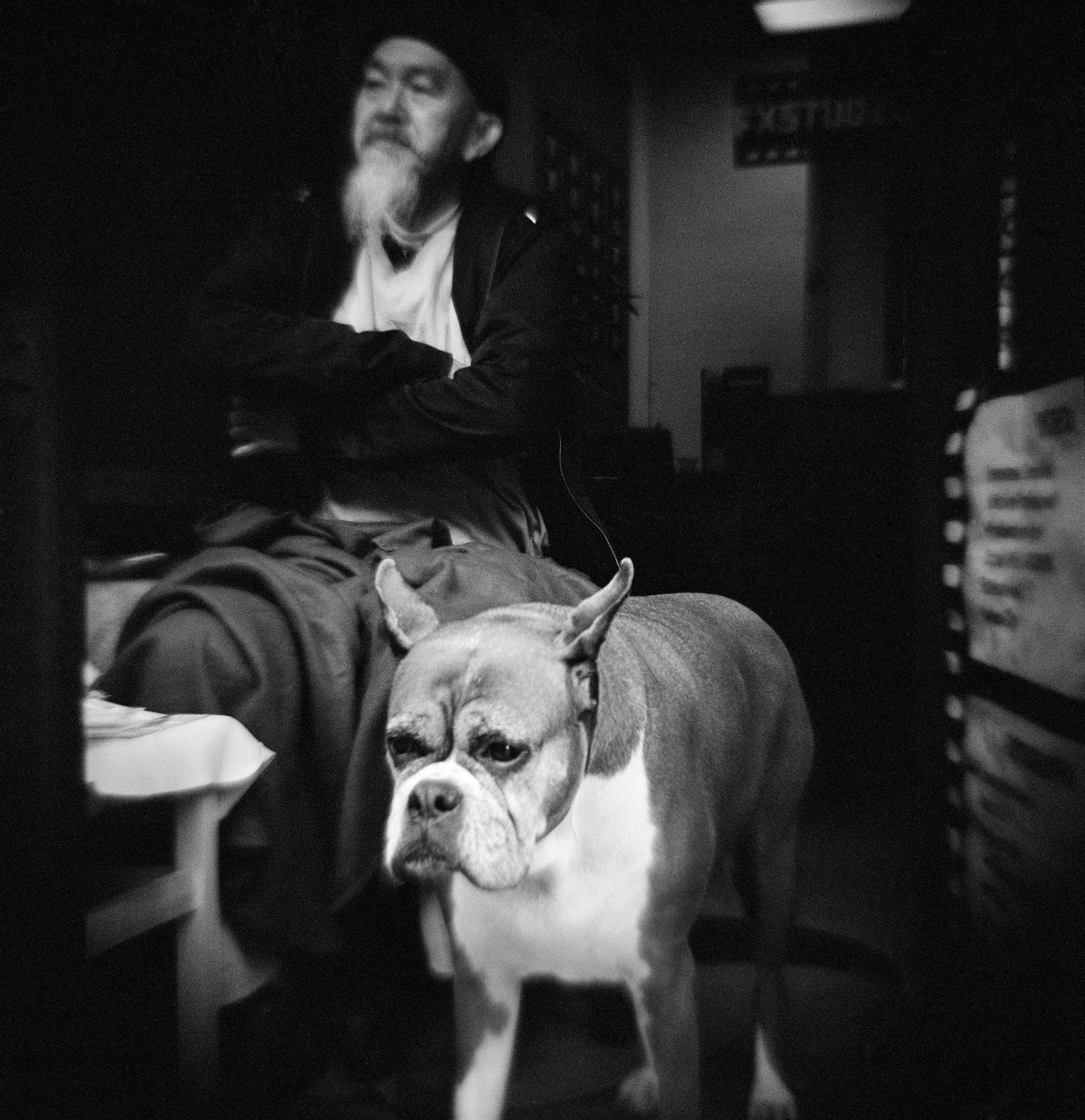 chinese_and_dog.jpg