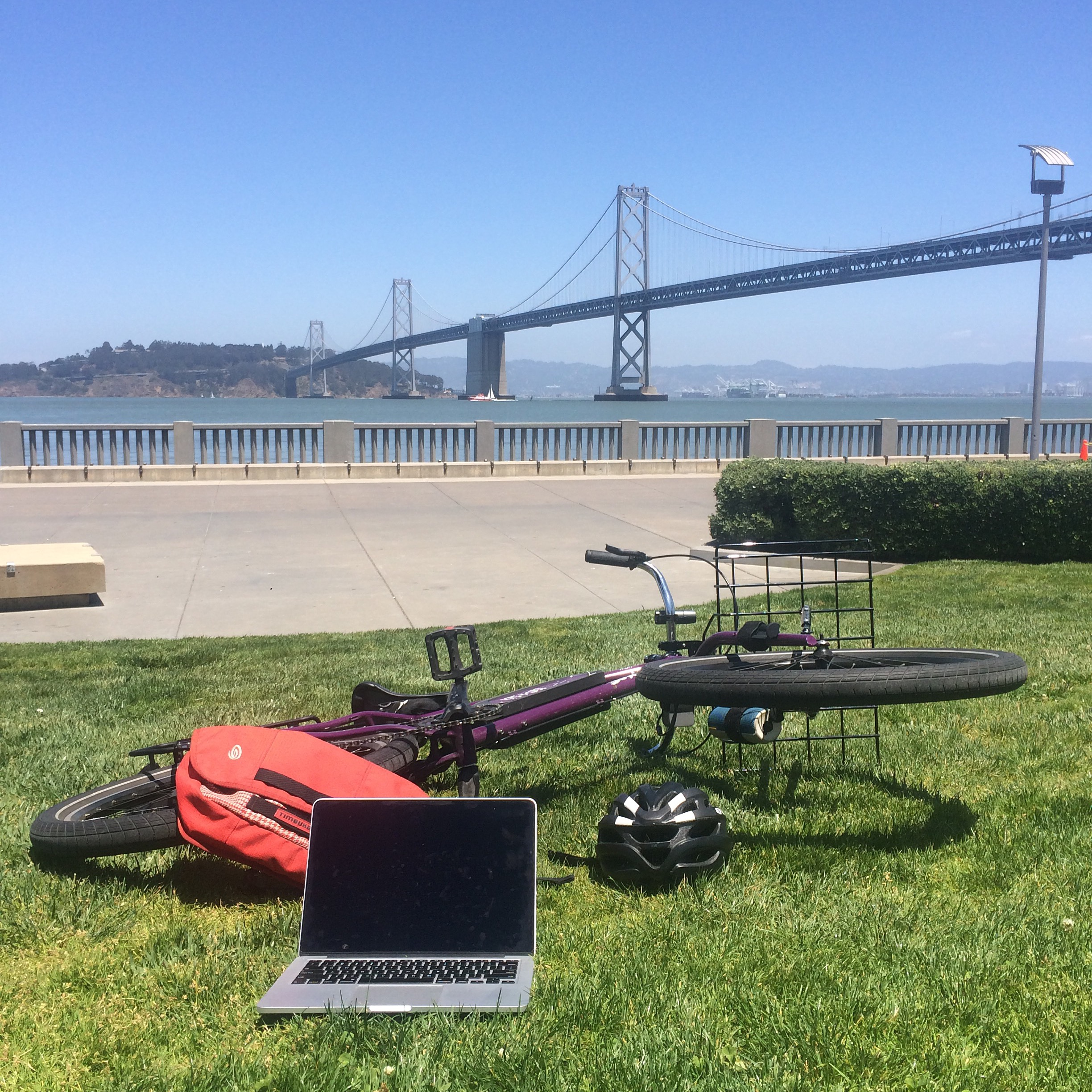 Mobile office day. For when it's sunny and you also have to work.
