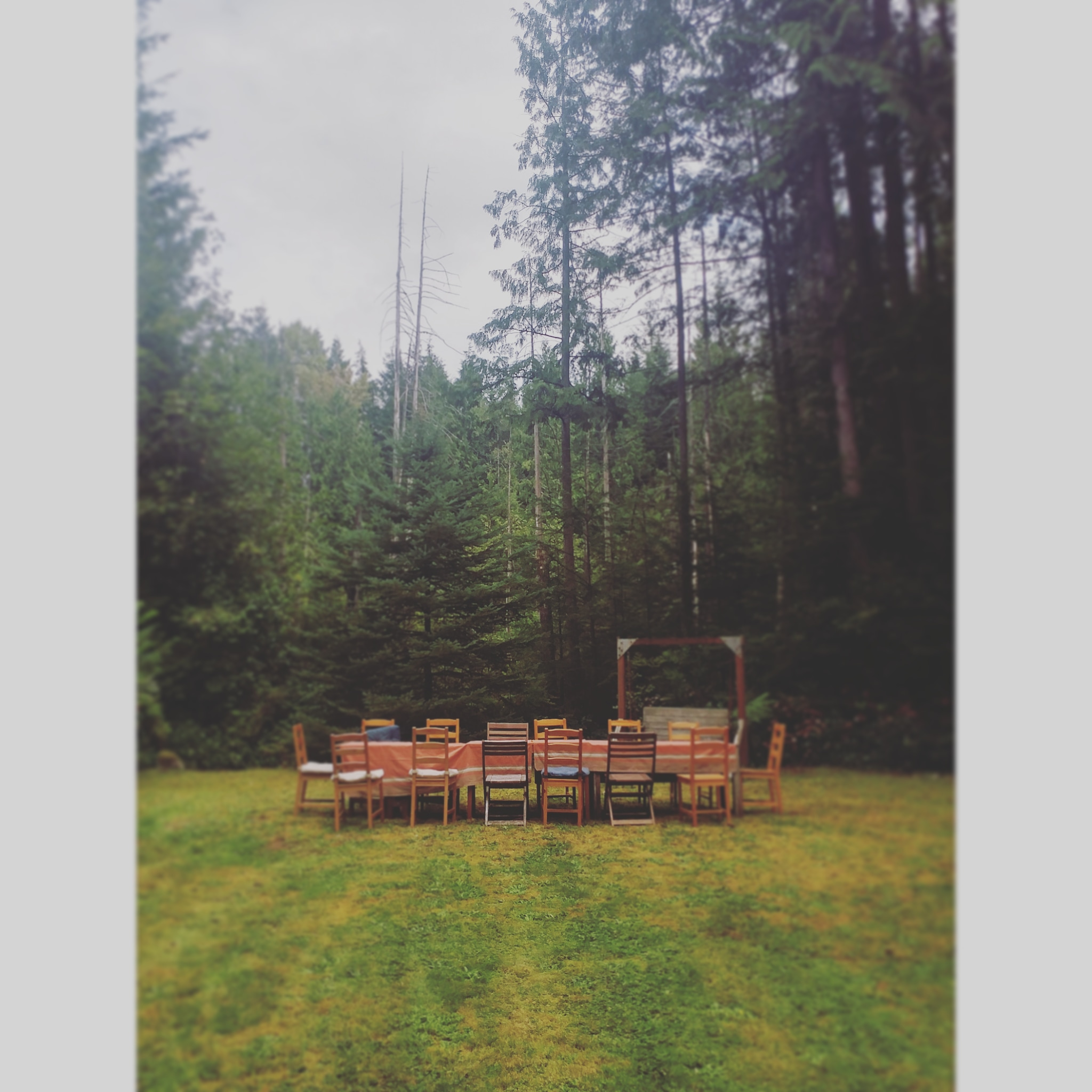2019 picnic empty chairs.jpg