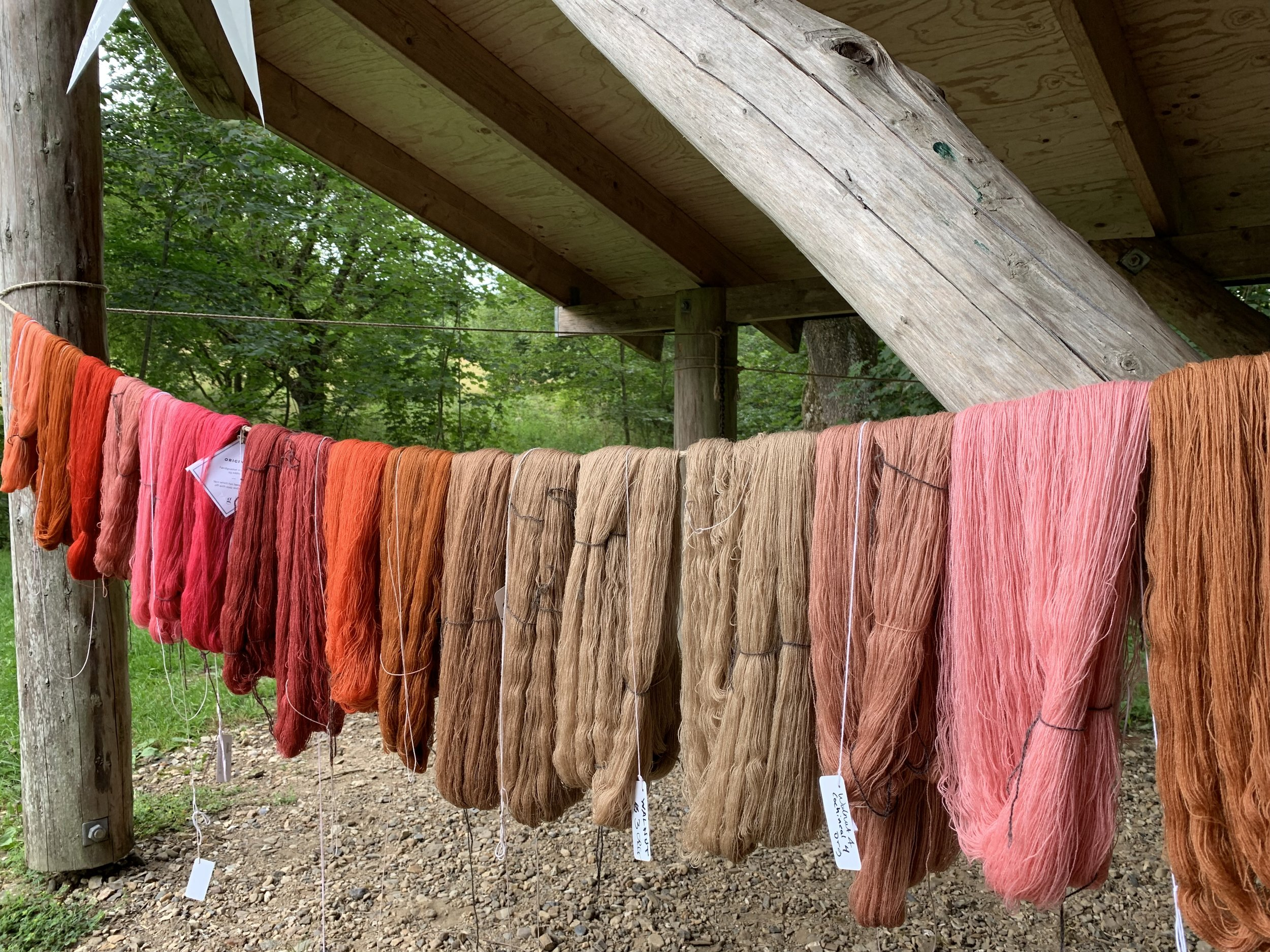 Day 1 skeins hanging to dry. Some skeins were over dyed in other dye pots to create varying shades.