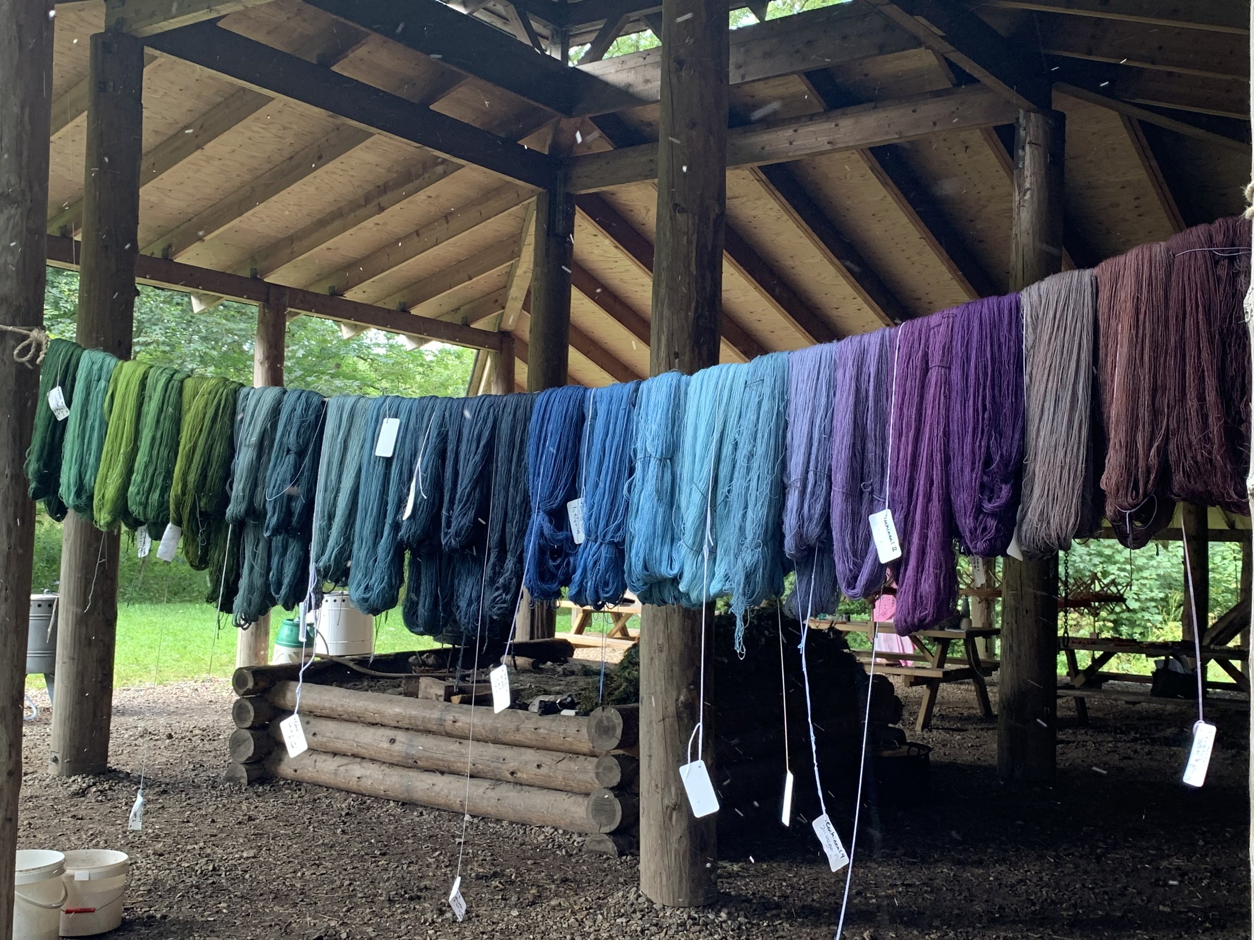 Here are the skeins post indigo dyeing. Quite the range of colours!