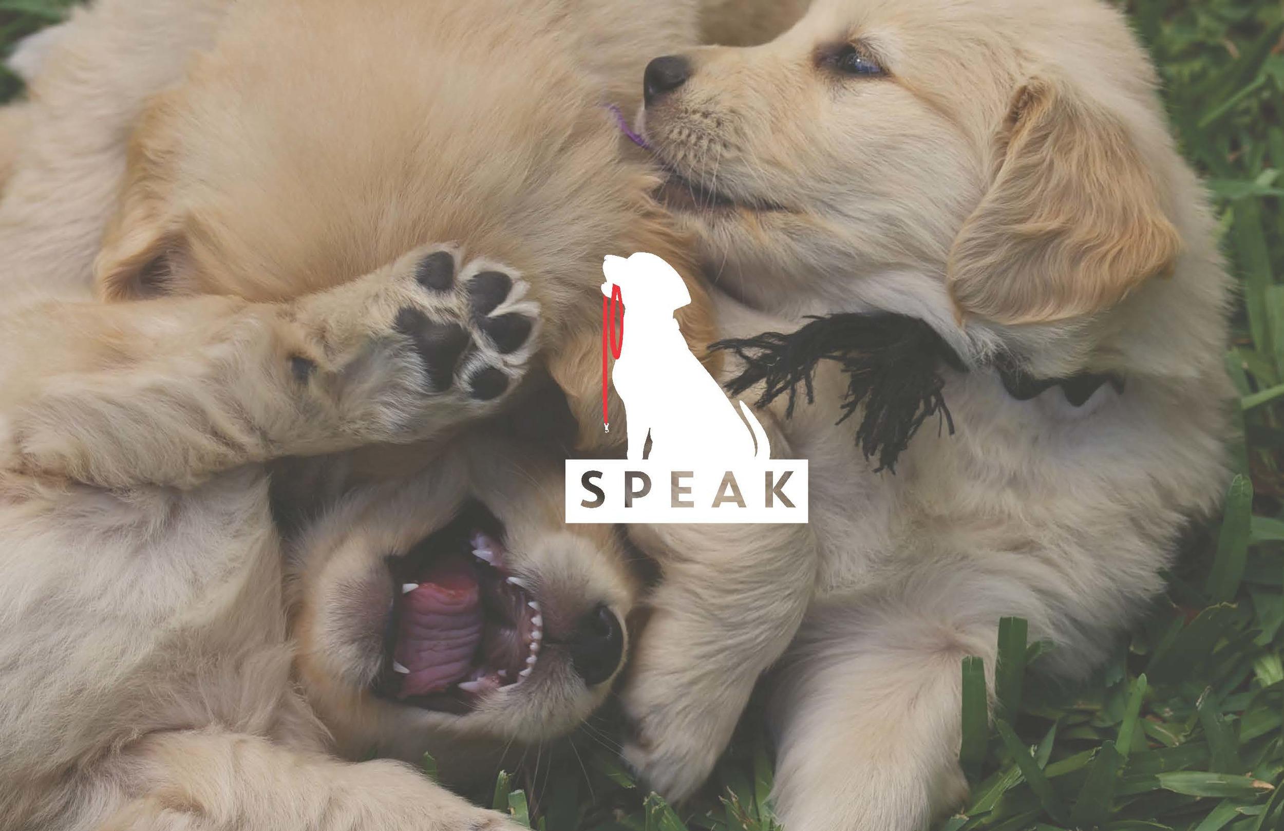 SPEAK_Booklet_Page_01.jpg