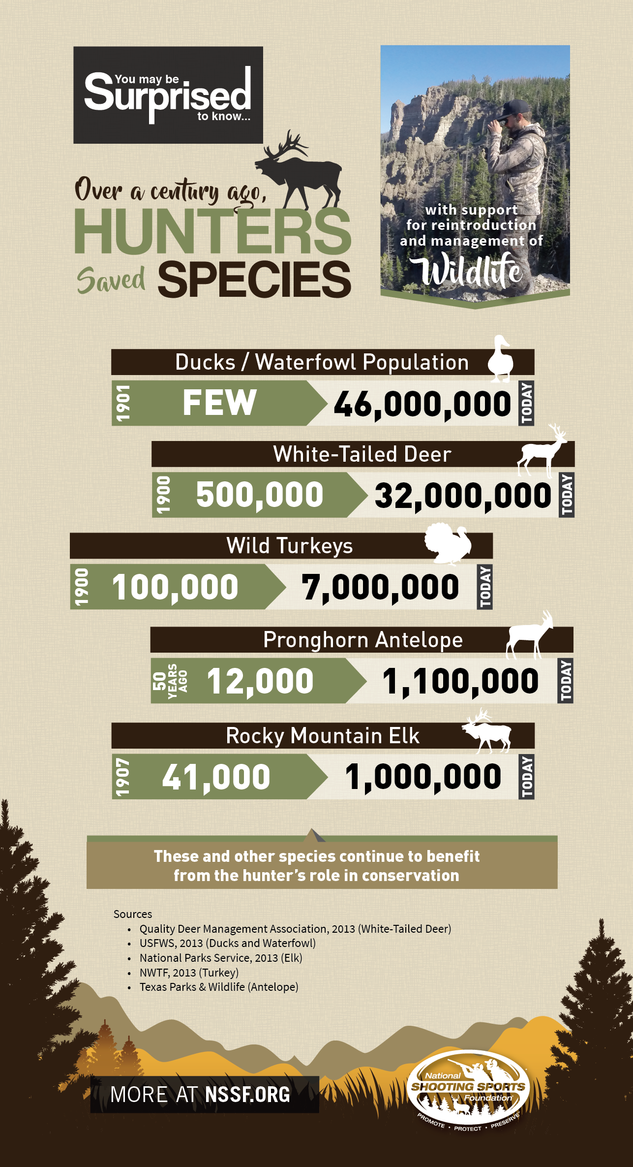 YMBS_HuntersSaveSpecies_Infographic.png