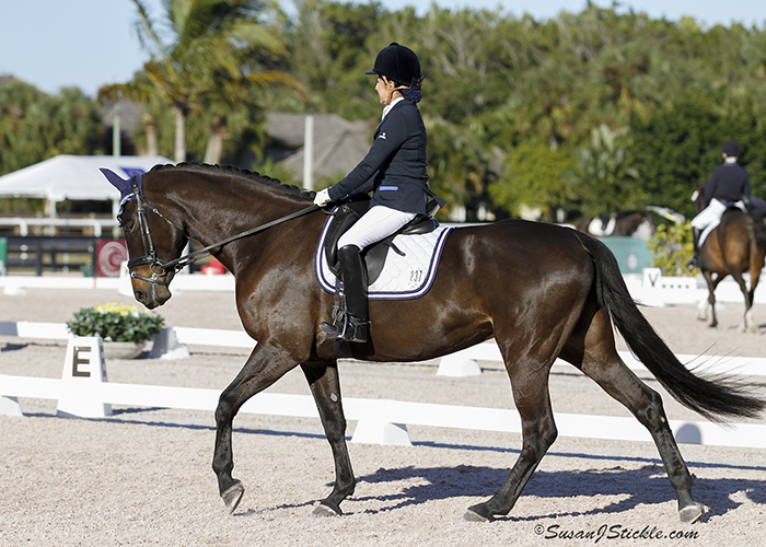 Debbie and Biara showing at the Global Dressage Festival in Wellington, FL. Photo: Sue Stickle