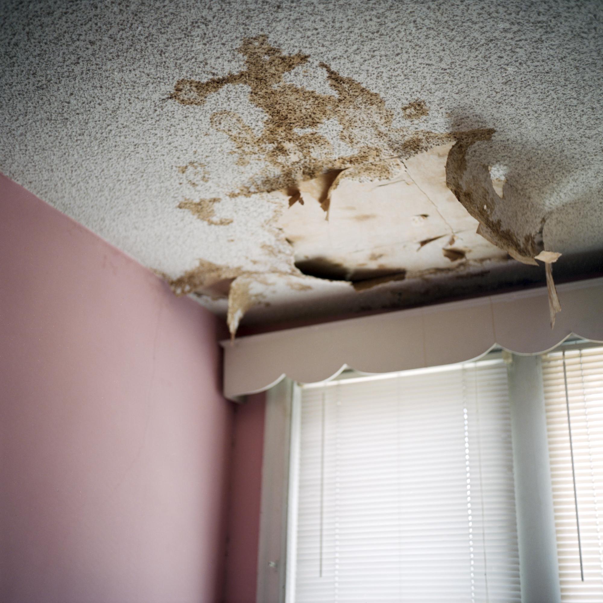 Peeling ceiling in pink room