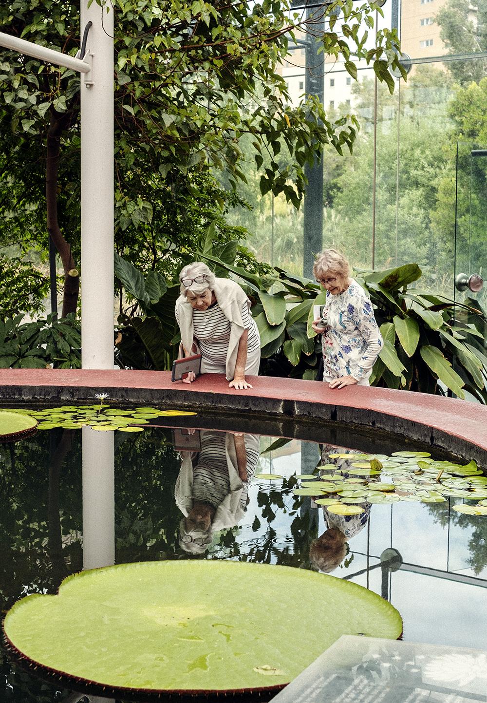bonnie_saporetti-gardens-ladies.jpg