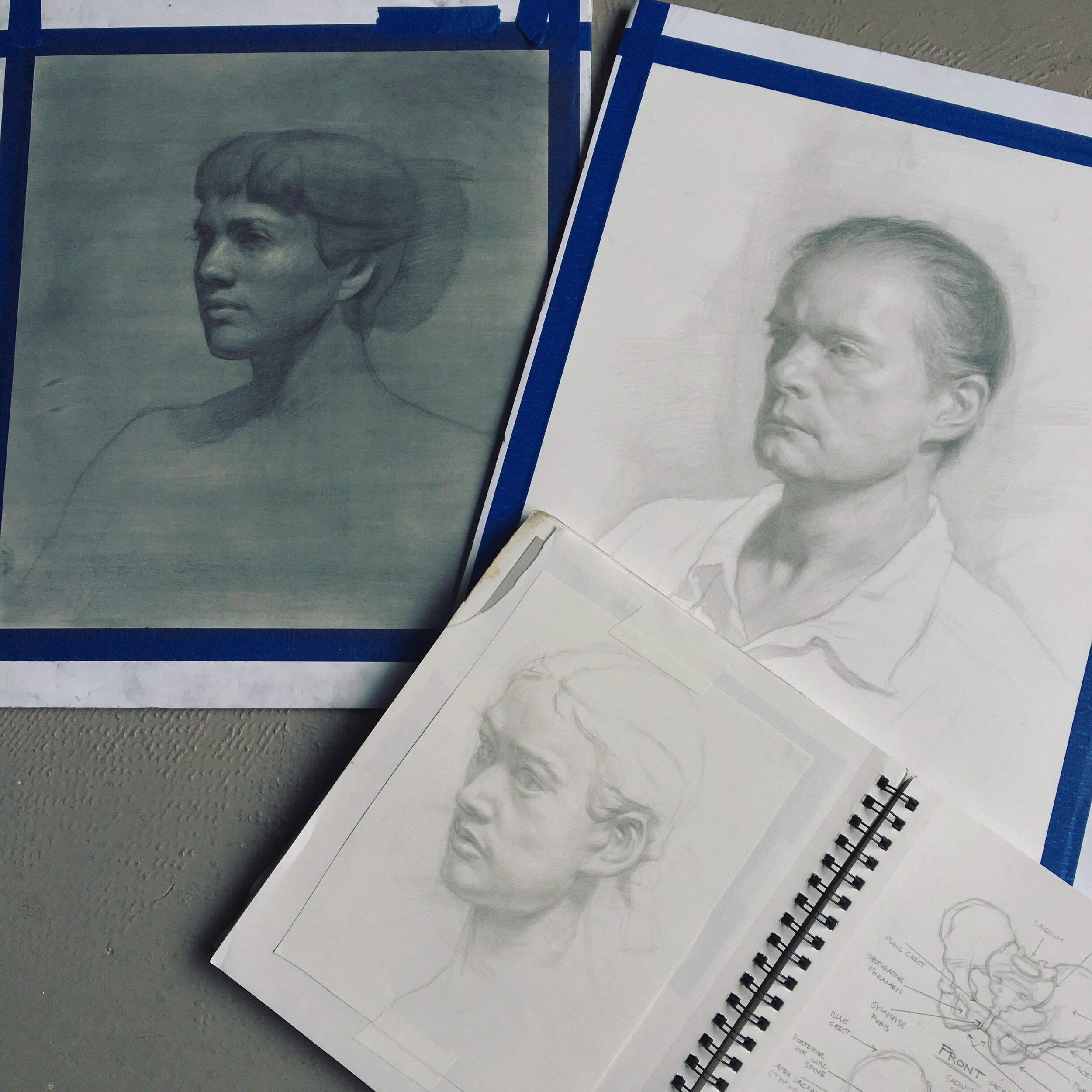 Here are a few of my demo drawings from Anatomy for Artists and Figure/Portrait Drawing. (Main Line Art Center and Chester County Art Association.)