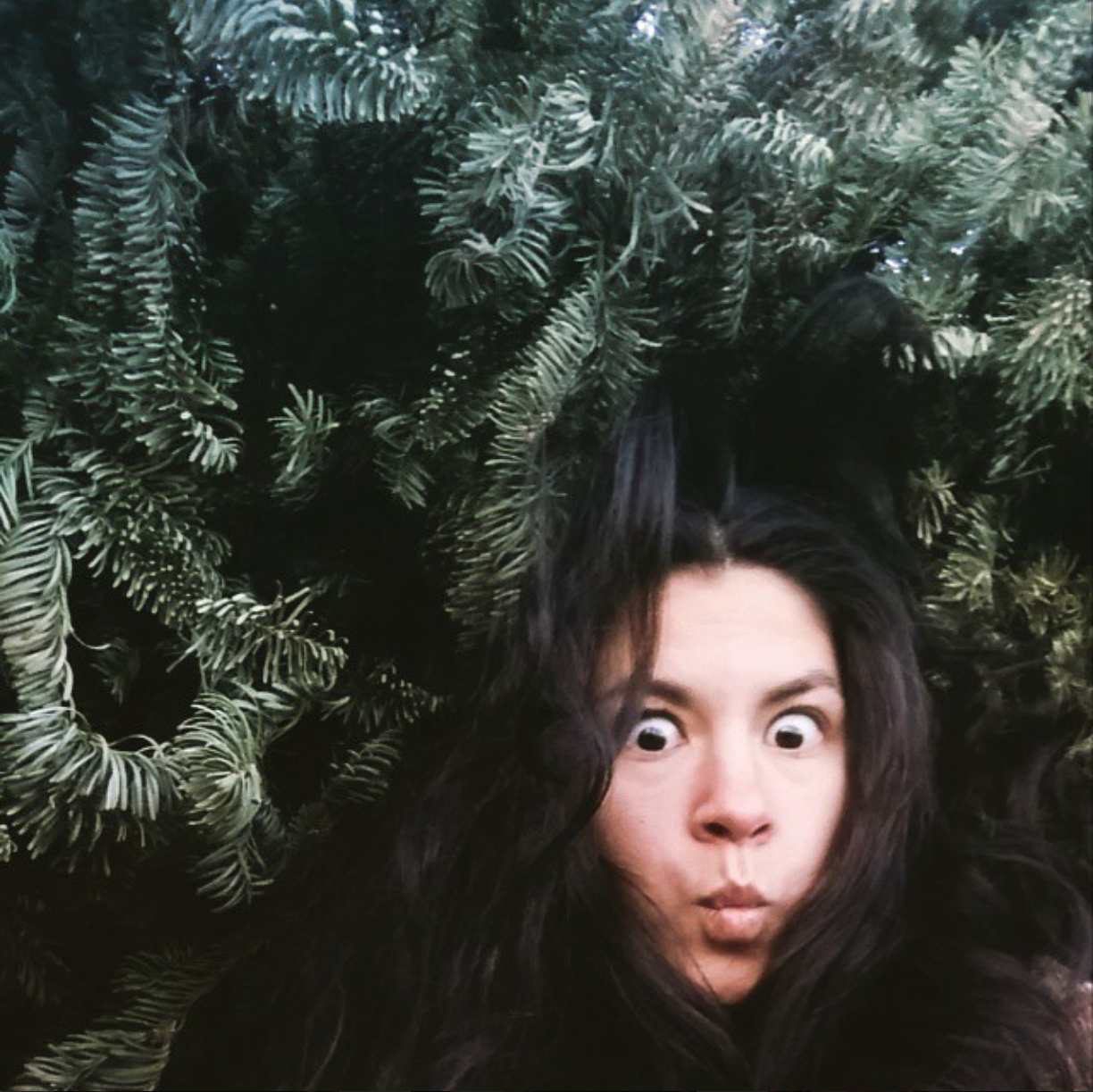 I've been perfecting the art of hiding from the clutches of the Digital Age. In this case, in a cave made of recycled Christmas trees in a snowy park in Nevada.