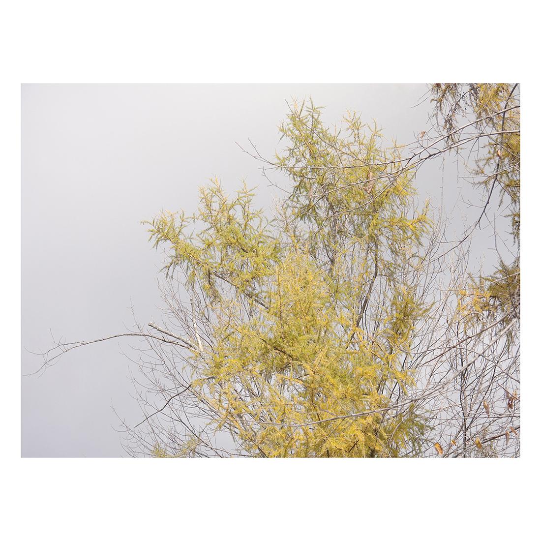 grey+sky+9x12+WEB.jpg