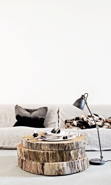 Petrified Wood Coffee Table / Herman Furniture Singapore