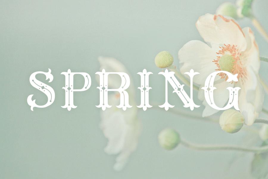 Méliès Font - Spring