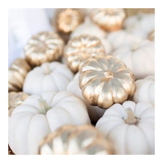 Have a spooky, tricksy, pretty-pumpkin-filled All Hallows' Eve! And don't forget to treat yo'self (as well as the kids) 👻 | Repost: @lilyofthevalleyinstyle