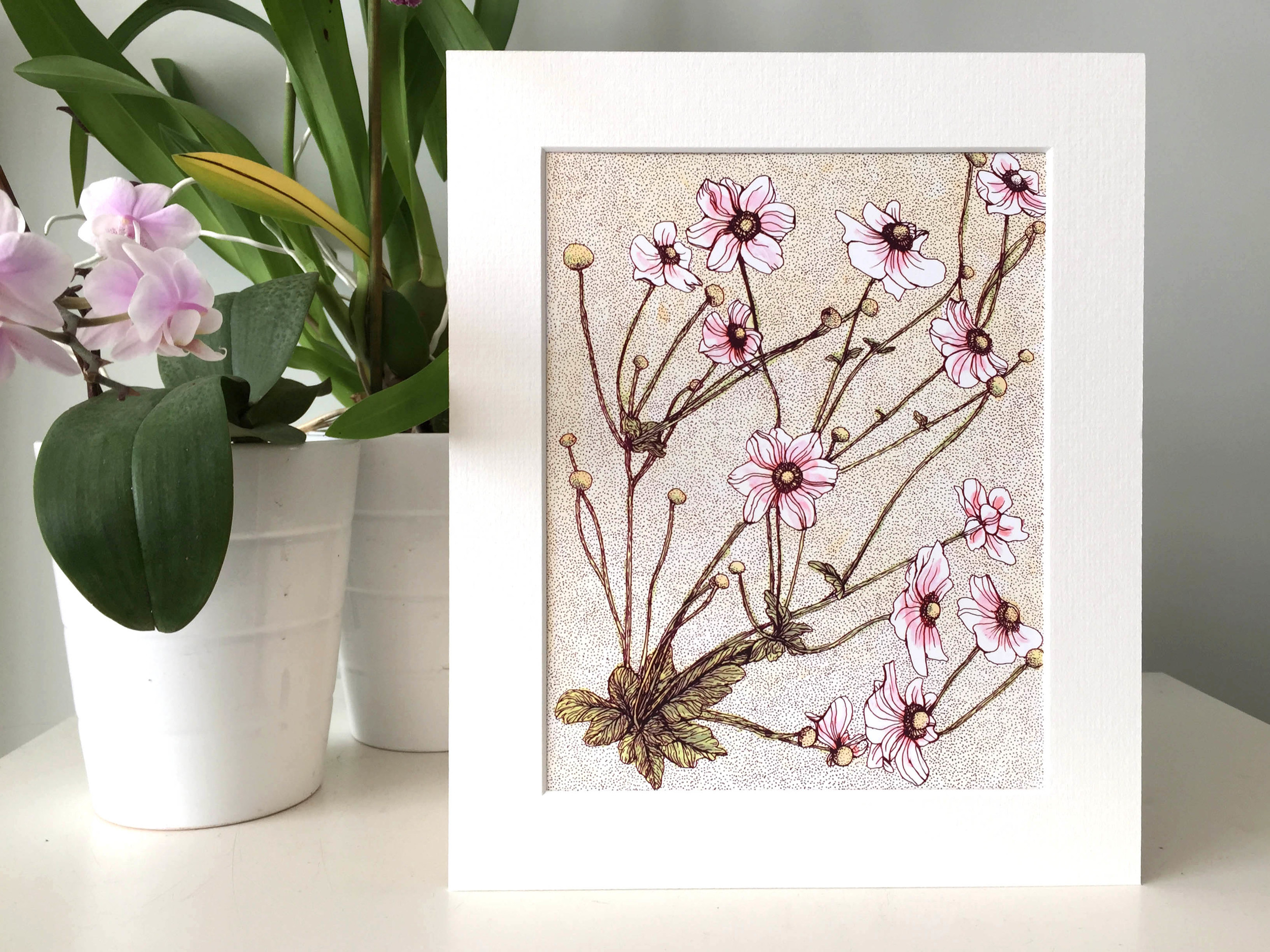 Small Pink Anemone Flower print with mount