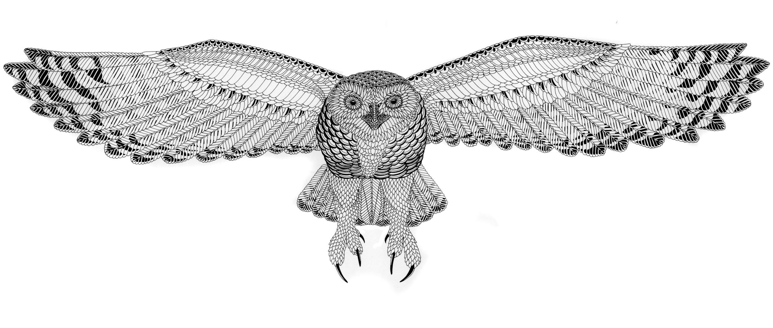 Nikita Snowy Owl