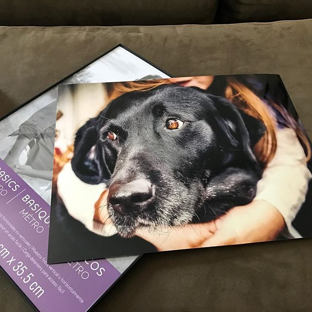 Getting ready for my #niece 's #birthday next month. Thought I'd get her some #wall #art from a #family #portrait session I did for my wife's brother and his family earlier this year. Absolutely love this #image of my niece wrapping her arms around her #dog . Can't wait to give it to her. #mynieceisadorable