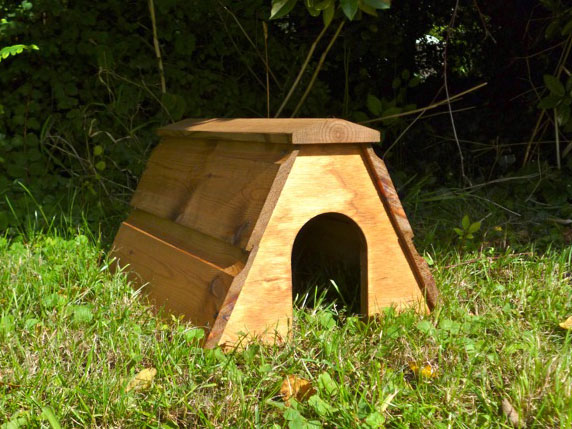 Hedgehog house.jpg