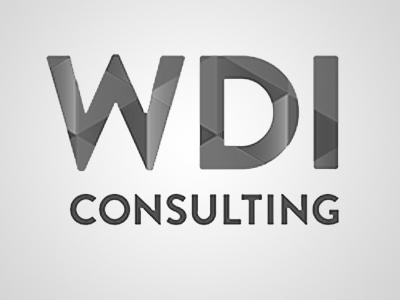 wdi consulting.jpg