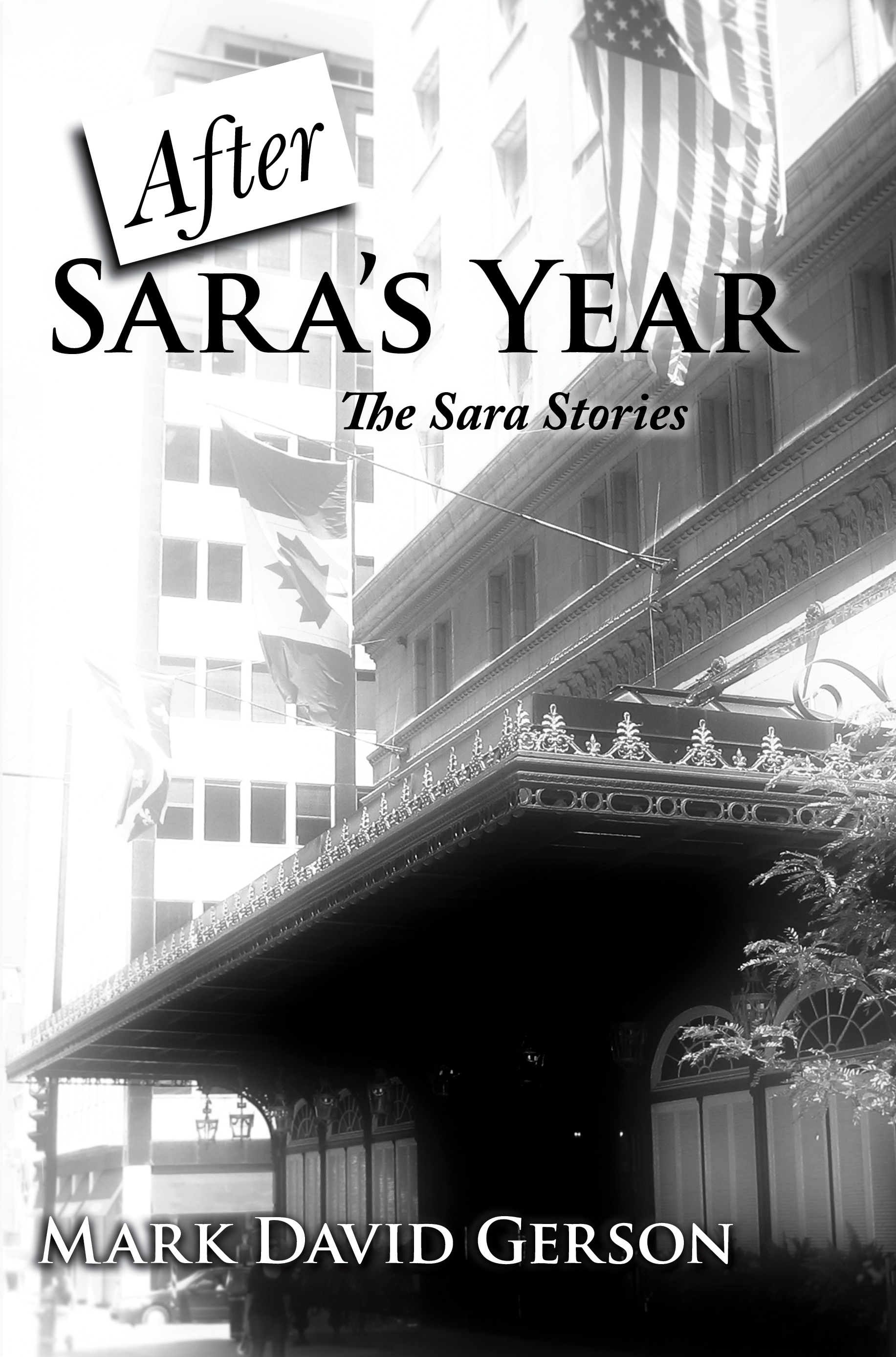 After Sara's Year cover MDG front copy.jpg