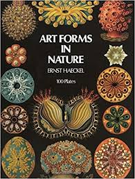 Art Forms in Nature - Recommended by Angela Cunningham