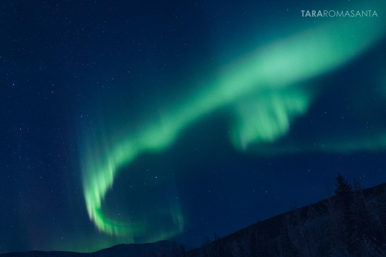 aurora borealis on the winter solstice, 2014