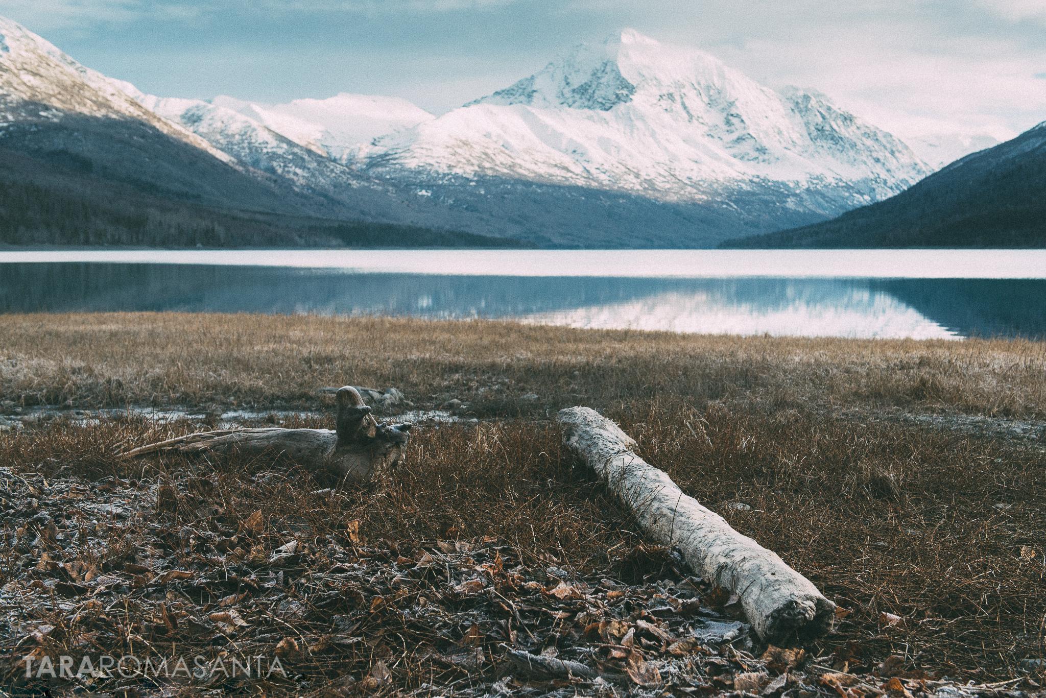 beauty in the breakdown at lake eklutna a landscape image by tara romasanta