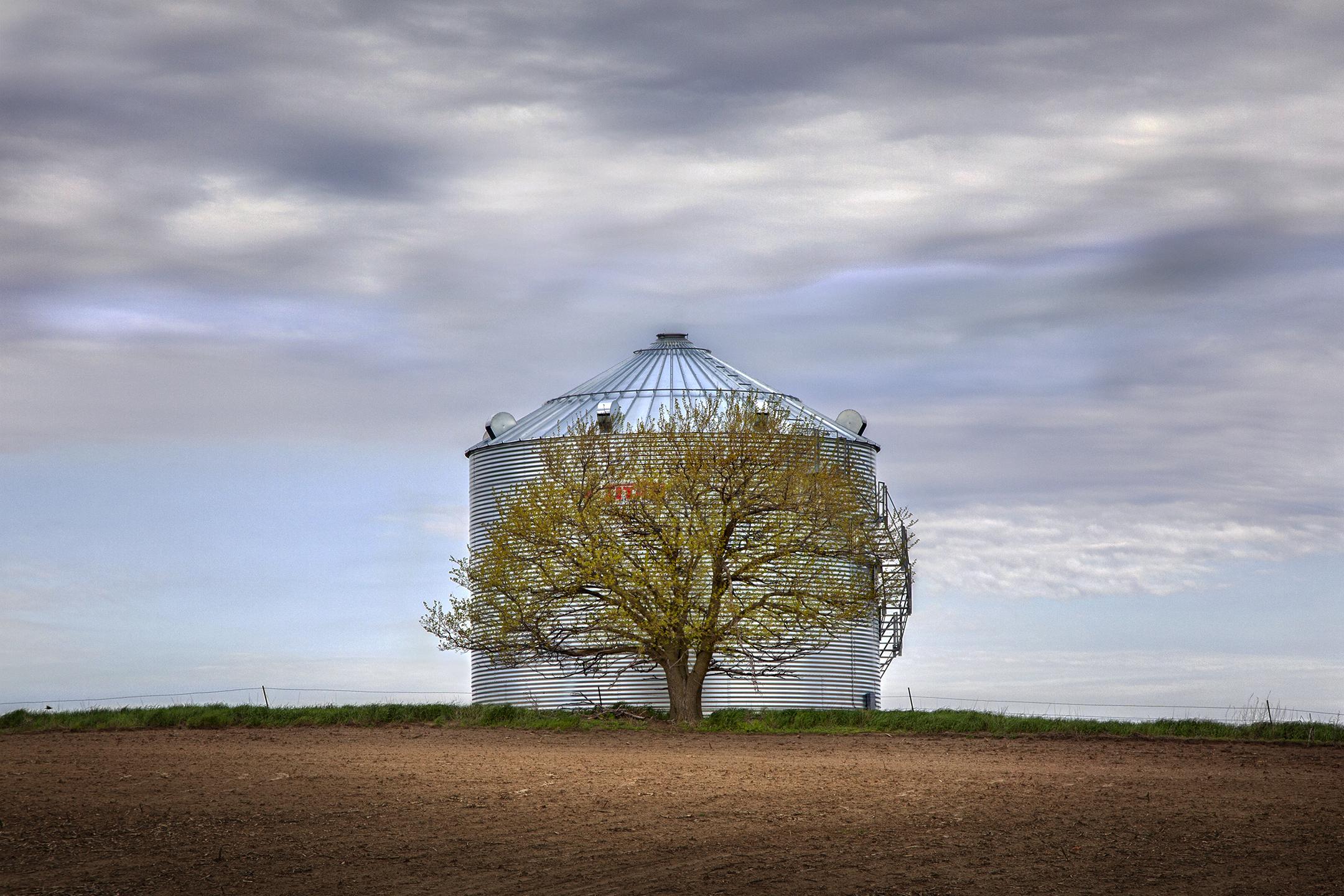Tree and Silo