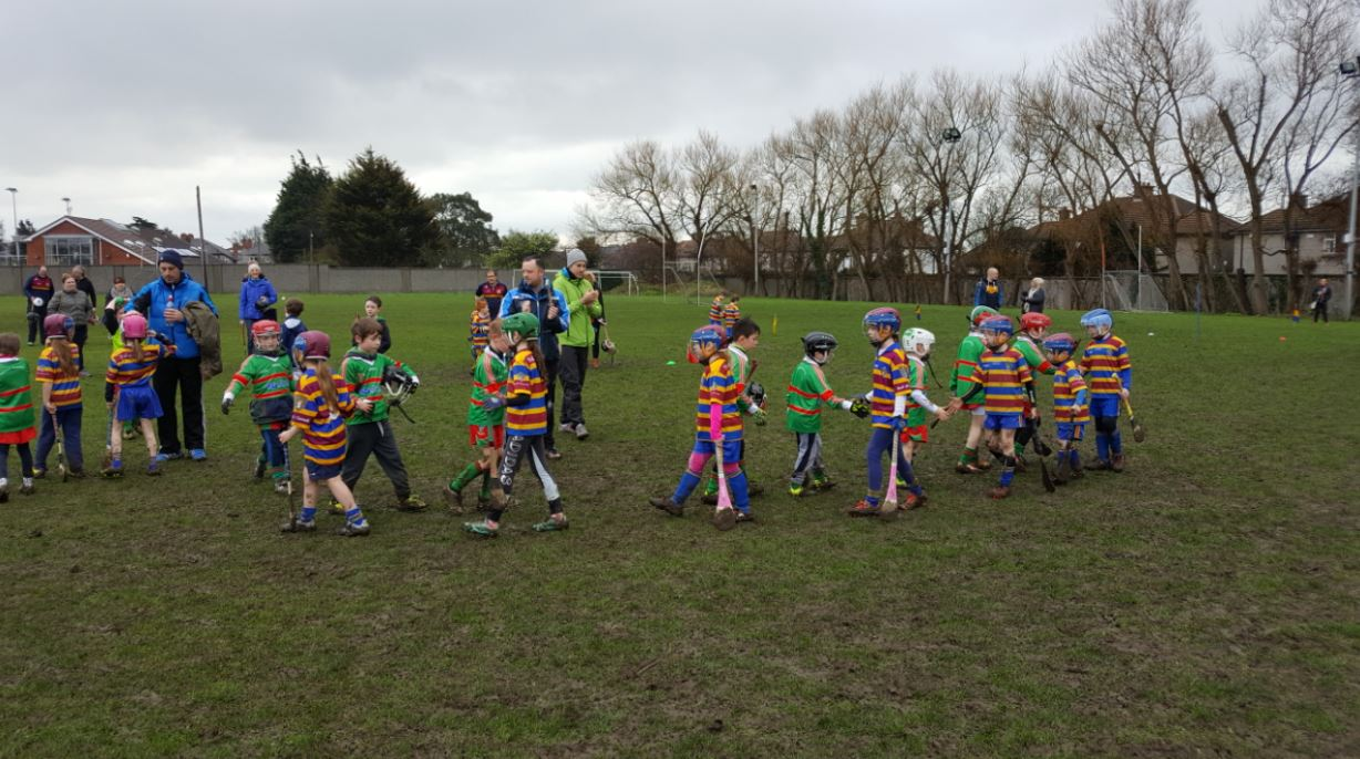 Our Under 8s Hurlers displaying great sportsmanship as they line up to ensure they shake every opposition players hand