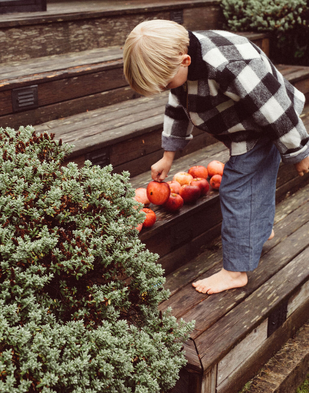 counting apples in our  Kurt jacket  in recycled wool