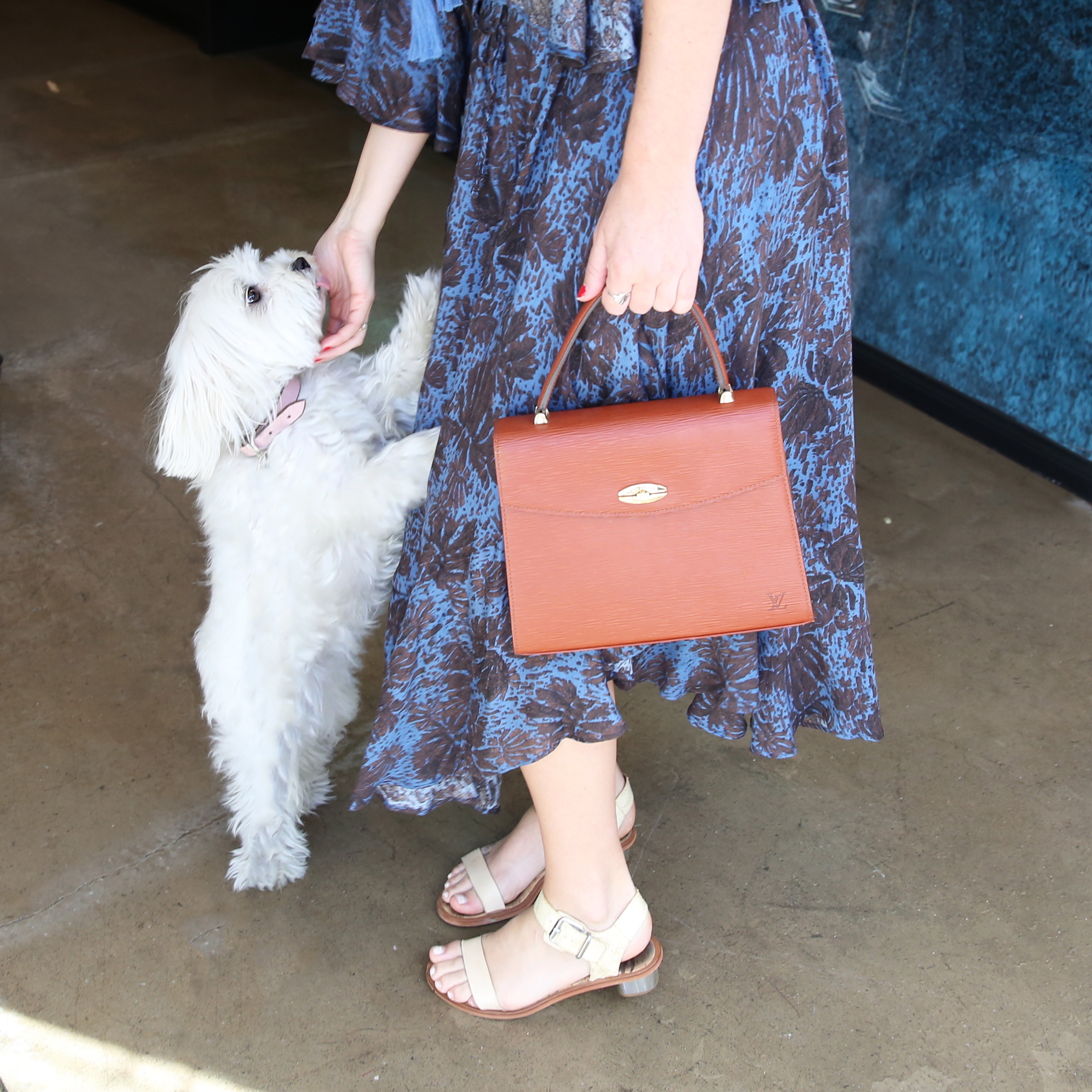 Ladybug getting a lick during our shopping trip! Sandals by Sam Edelman, bag vintage Malesherbes Louis Vuitton.