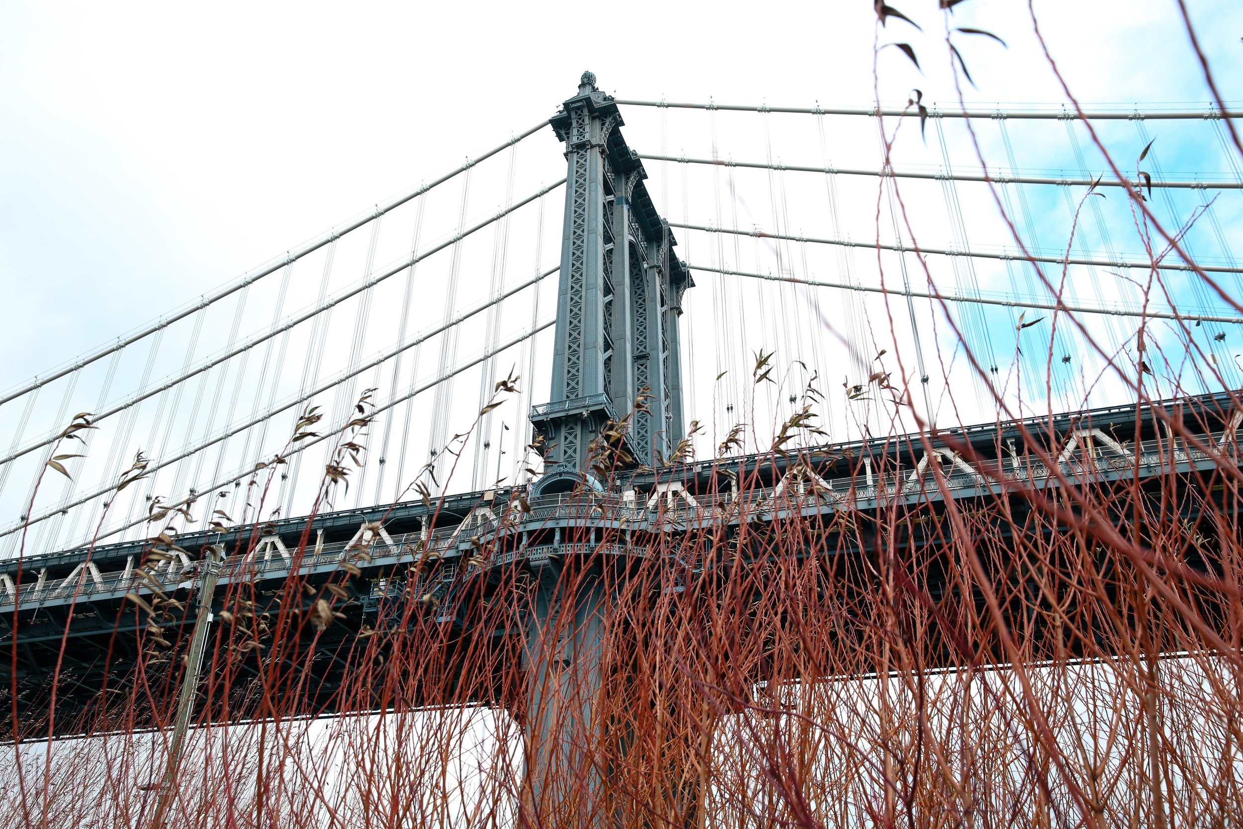 The Dumbo Bridge