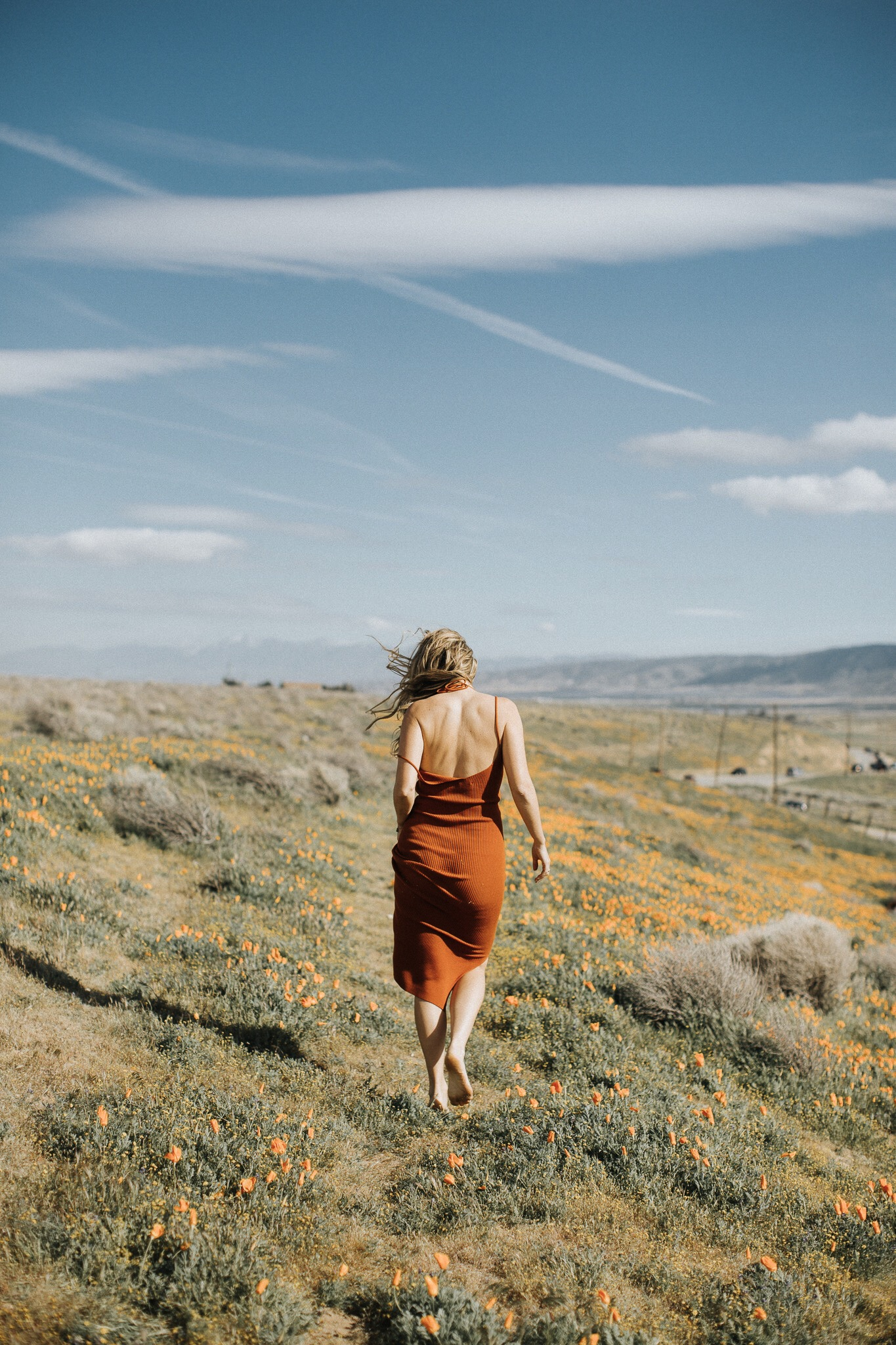 the style sauce antelope valley poppy fields fashion blog
