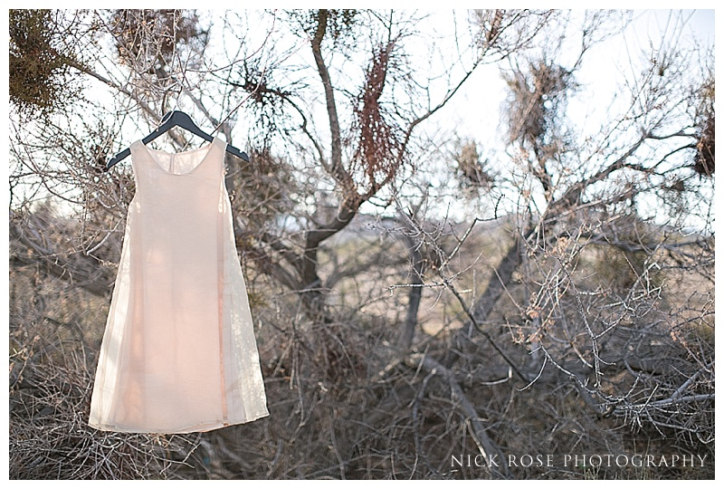 Bridal dress in the trees in Nevada