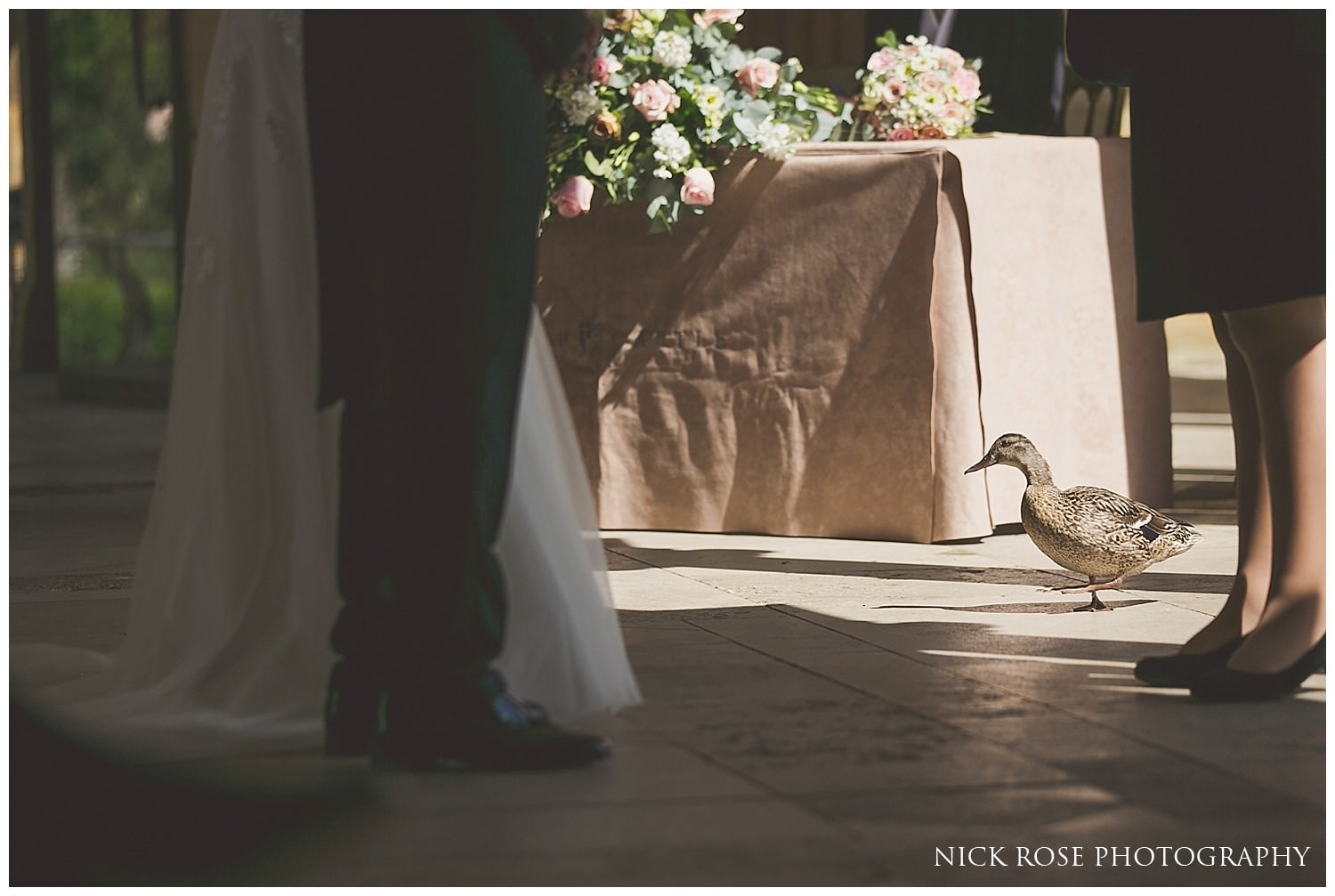 Family of ducks watching a civil wedding ceremony at Hever Castle in Kent