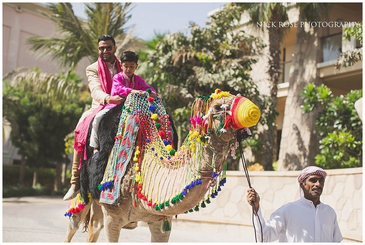 Groom riding a camel for his destination Hindu wedding Baraat in Dubai