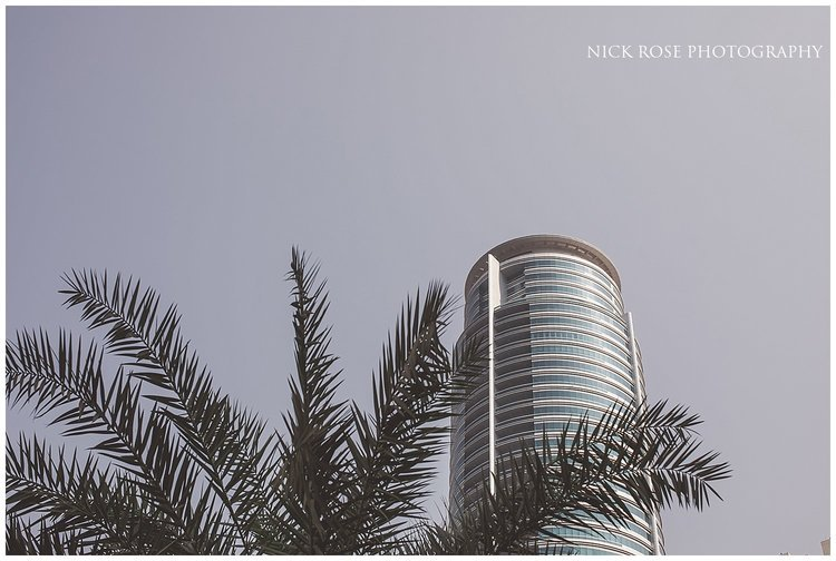 Palm tree and skyscraper at the Dubai marina