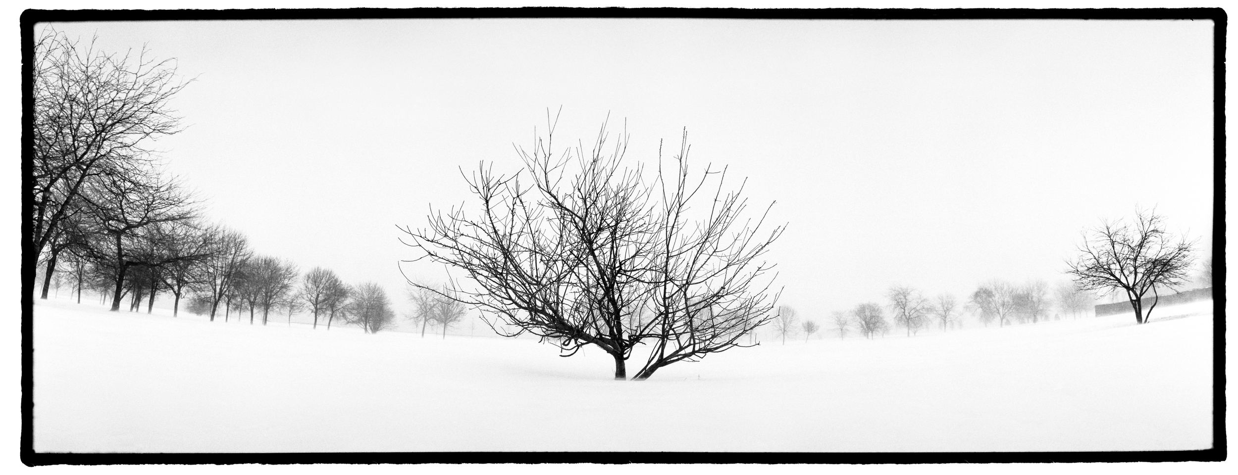 Chicago Snow Printer.jpg