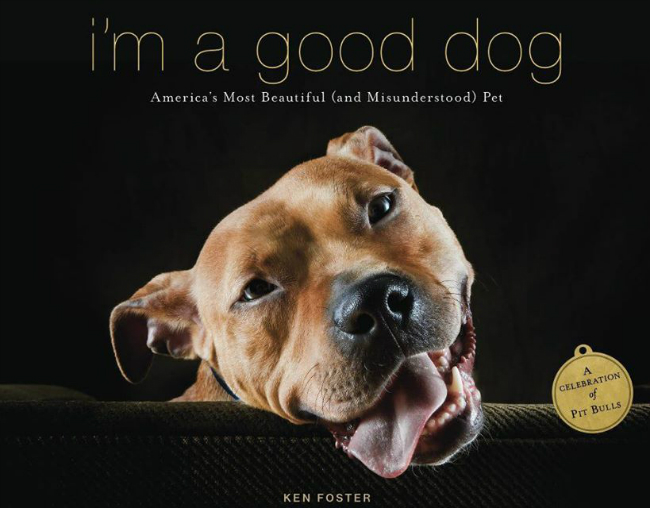 pitbull-book-im-a-good-dog.jpg