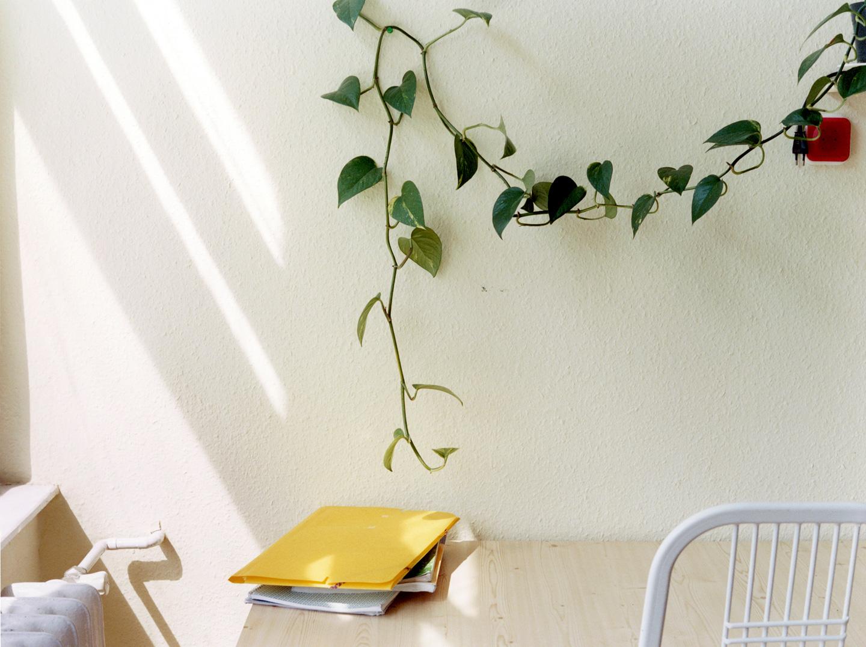 Yellow Folder In Boys Room, 2004