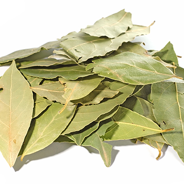 """Sweet, balsamic fragrance and very strong in flavor. Bay leaves are used in stocks, soups, stews, sauces and pickles because they yield their flavor slowly.           Normal   0           false   false   false     EN-US   JA   X-NONE                                                                                                                                                                                                                                                                                                                                                                                /* Style Definitions */  table.MsoNormalTable {mso-style-name:""""Table Normal""""; mso-tstyle-rowband-size:0; mso-tstyle-colband-size:0; mso-style-noshow:yes; mso-style-priority:99; mso-style-parent:""""""""; mso-padding-alt:0in 5.4pt 0in 5.4pt; mso-para-margin:0in; mso-para-margin-bottom:.0001pt; mso-pagination:widow-orphan; font-size:12.0pt; font-family:""""Cambria"""",""""serif""""; mso-ascii-font-family:Cambria; mso-ascii-theme-font:minor-latin; mso-hansi-font-family:Cambria; mso-hansi-theme-font:minor-latin; mso-fareast-language:ZH-CN;}"""
