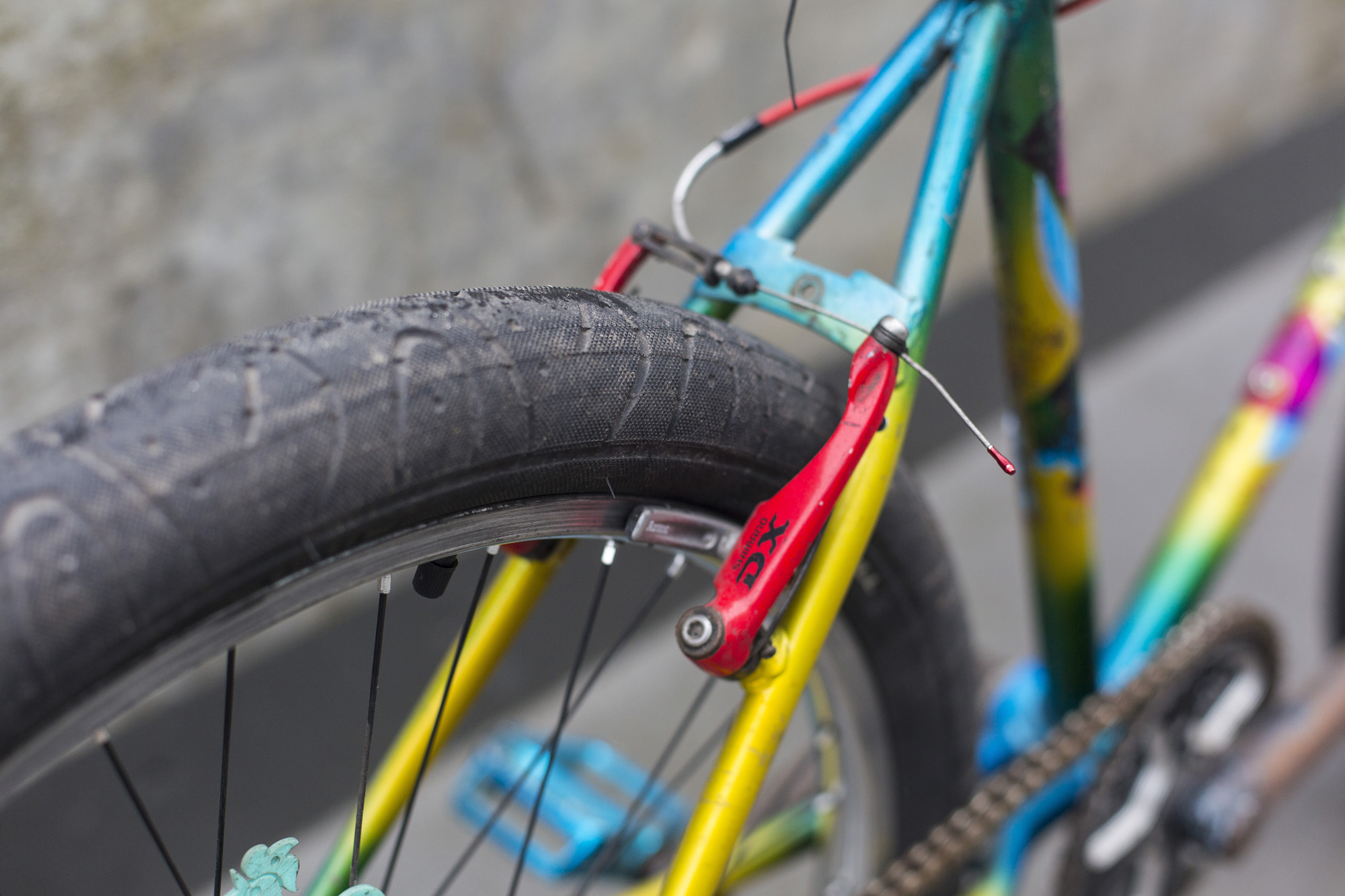 seabass-cycles-bikes-instore-5-february-2019-raleigh-cycles-mantis-00421.jpg