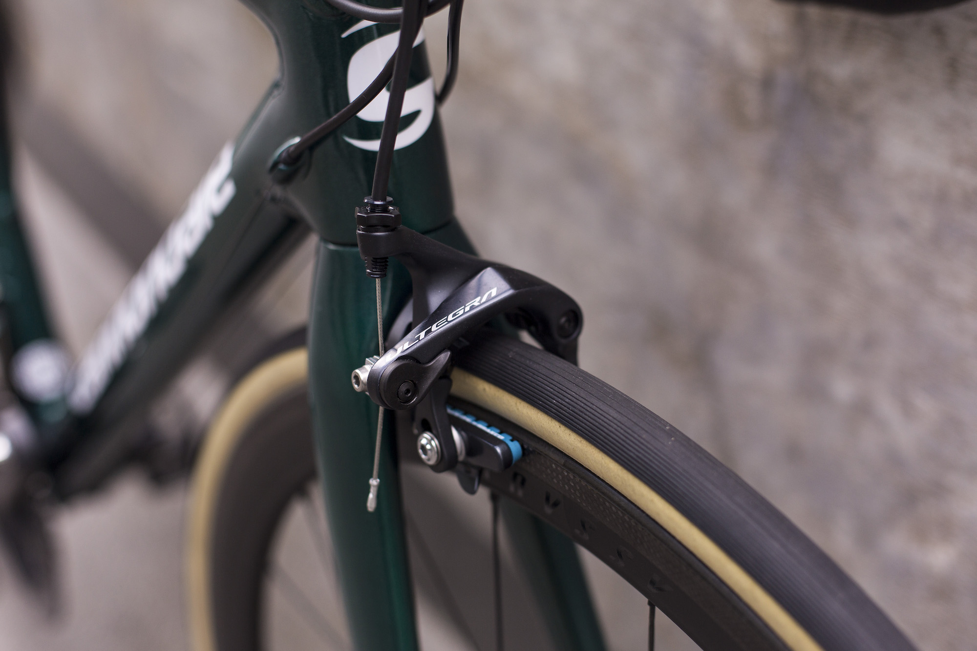 seabass-cycles-bikes-parts-instore-2-april-2019-cannondale-green-4288.jpg